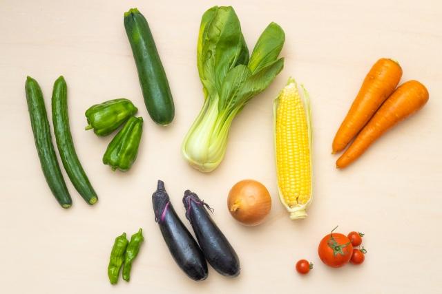 食育ピクトグラムや食事バランスガイドをご紹介